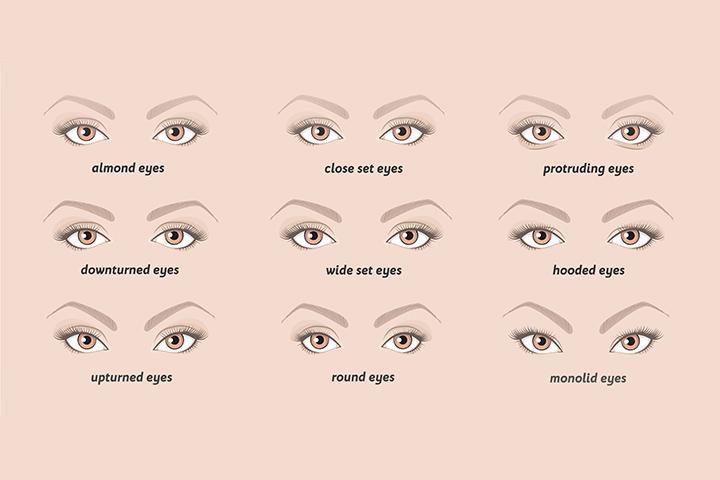 shapes of eyes