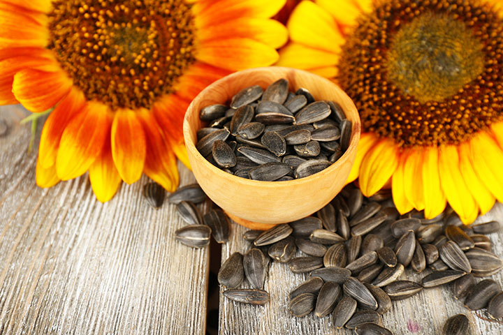 low carb snacks sunflower seeds