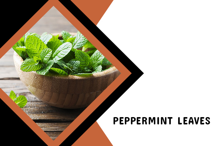 Peppermint Leaves for Back Acne