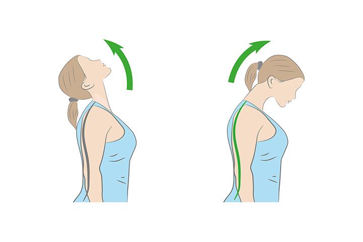 neck forward flexion