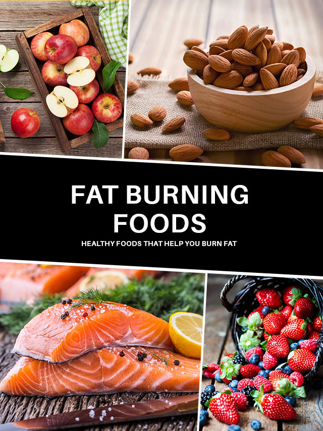 Fat Burning Foods – Healthy Foods That Help You Burn Fat
